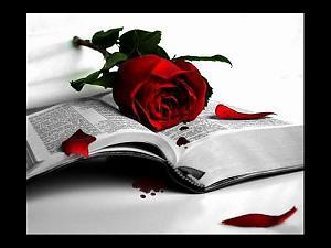 Ты краснеешь если он дарит цветы,пишет тебе стихи.
